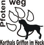 Korthals Griffon