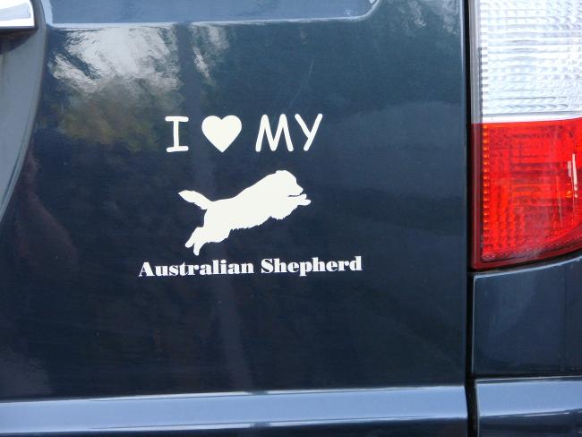 Australian Shepherd Hundeaufkleber Anfalas.de