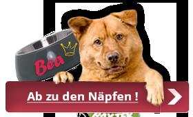 Hundenapf mit Namen by anfalas