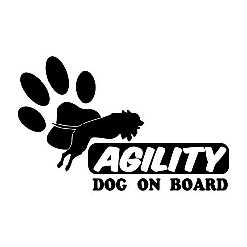 Agility & Degility