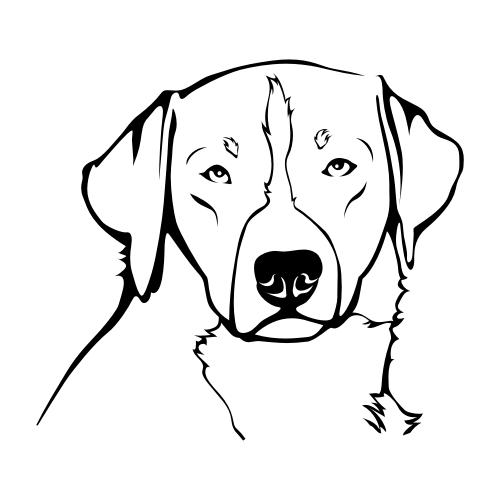 Appenzeller Sennenhund Aufkleber