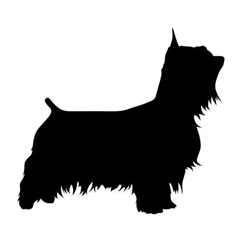 Australian Silky Terrier Wandtattoos