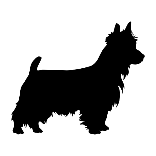 Australian Terrier Aufkleber