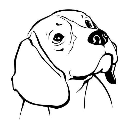 Beagle Aufkleber