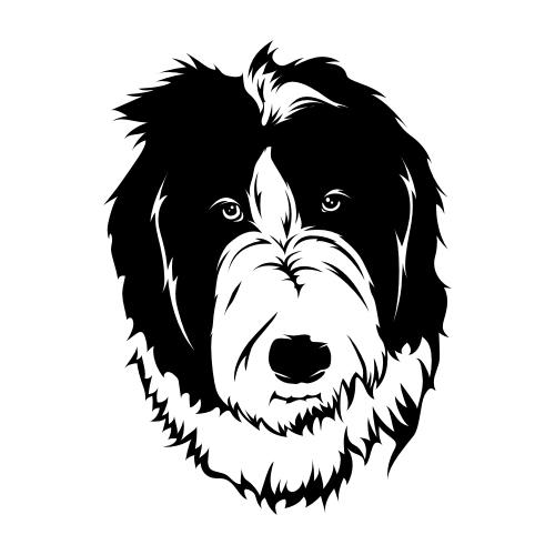 Bearded Collie Wandtattoos