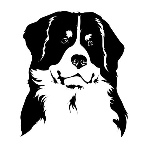 Berner Sennenhund Aufkleber