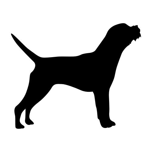 Border Terrier Wandtattoos