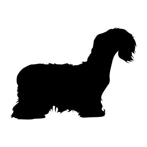 Cesky Terrier Wandtattoos
