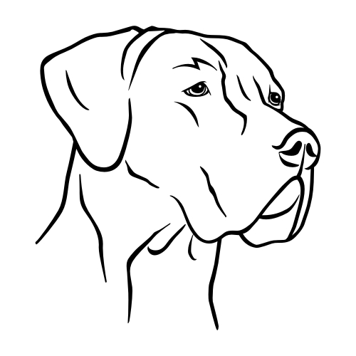Deutsche Dogge Bügelbilder