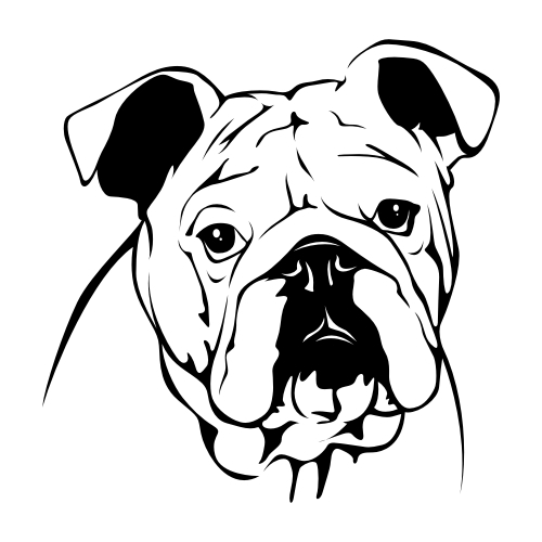 English Bulldog Wandtattoos