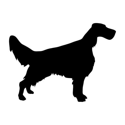 English Setter Wandtattoos