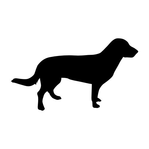 Entlebucher Sennenhund Aufkleber