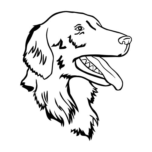 Flat Coated Retriever Wandtattoos