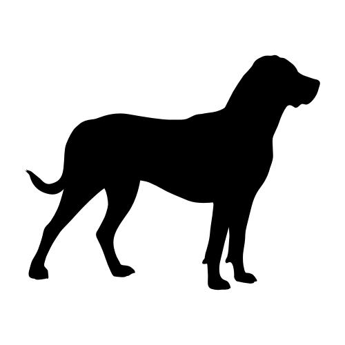 Großer Schweizer Sennenhund Aufkleber