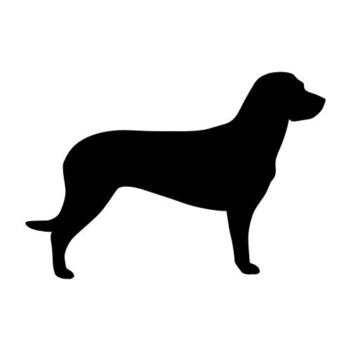Hannoverscher Schweißhund Bügelbilder