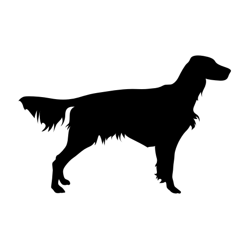 Irish Red Setter Wandtattoos