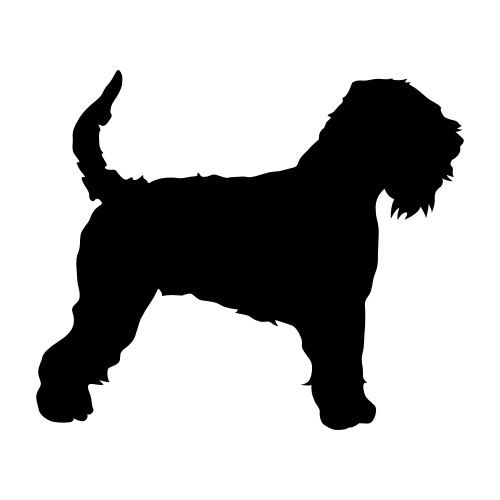 Irish Soft Coated Wheaten Terrier Wandtattoos