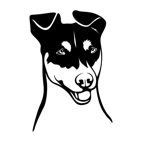 Jack Russell Terrier Wandtattoos
