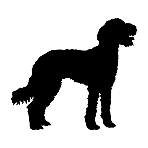 Labradoodle Wandtattoos