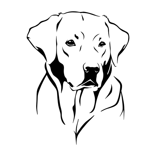 Labrador Retriever Wandtattoos