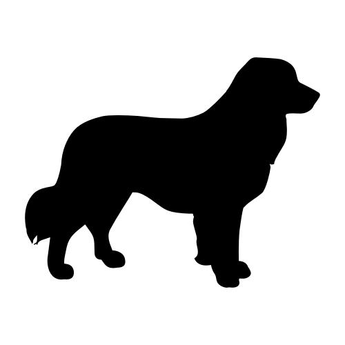 Leonberger Bügelbilder