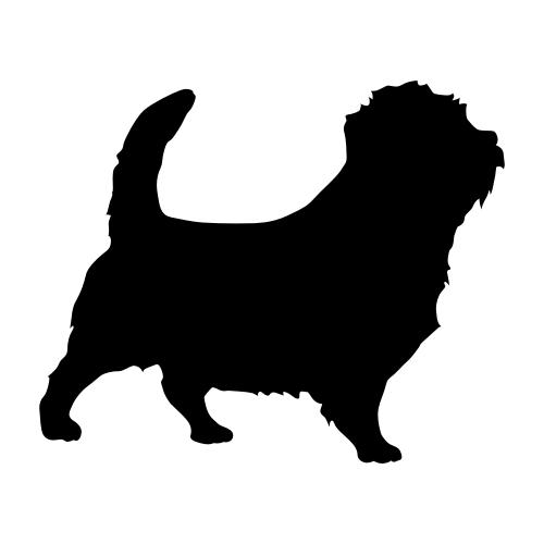 Norfolk Terrier Bügelbilder