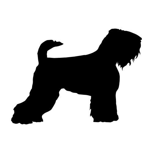 Schwarzer Terrier Bügelbilder