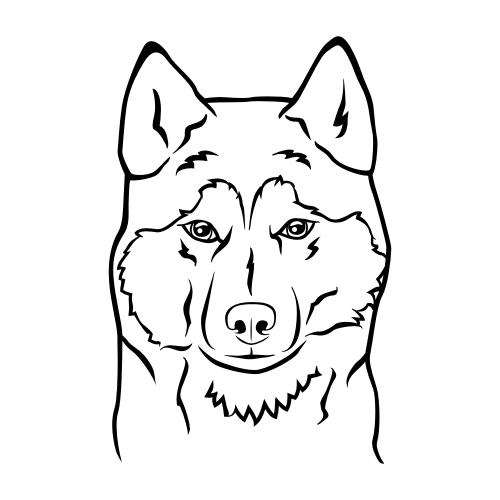 Siberian Husky Wandtattoos