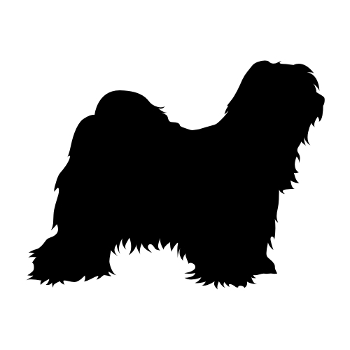 Tibet Terrier Wandtattoos