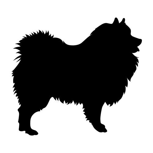 Wolfsspitz / Keeshound Bügelbilder