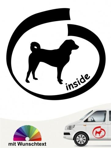 Appenzeller Sennenhund inside Aufkleber anfalas.de