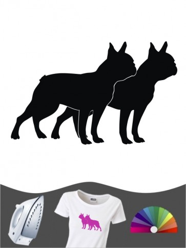 Boston Terrier 2 - Bügelbild