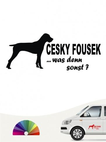 Cesky Fousek was denn sonst Autoaufkleber anfalas.de