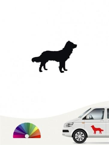 Hunde-Autoaufkleber Deutscher Wachtelhund 1 Mini von Anfalas.de
