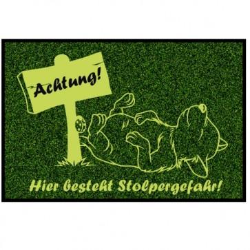 Fußmatte Hundemotiv niedlich Anfalas.de