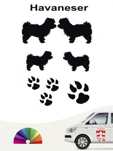 Hunde-Autoaufkleber Havaneser 12 von Anfalas.de