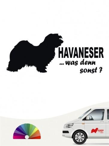 Havaneser was denn sonst Heckscheibenaufkleber von anfalas.de