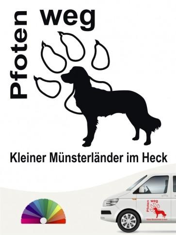 Pfoten weg Kleiner Münsterländer im Heck von anfalas.de