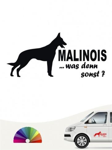 Malinois Autoaufkleber was denn sonst von anfalas.de