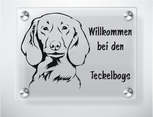 Hundeschild Acrylglas Langhaardackel Anfalas.de