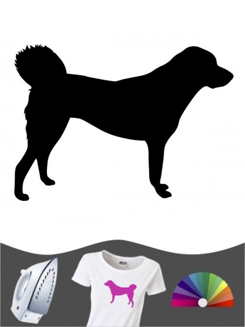Anatolischer Hirtenhund 1 - Bügelbild