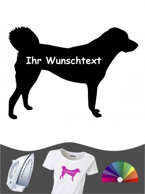 Anatolischer Hirtenhund 3 - Bügelbild