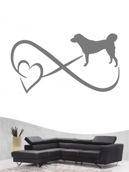 Anatolischer Hirtenhund 40 - Wandtattoo