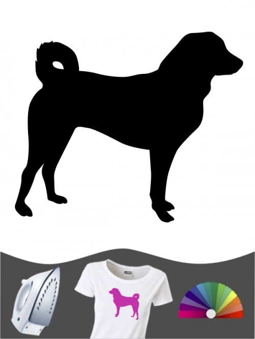 Appenzeller Sennenhund 1 - Bügelbild