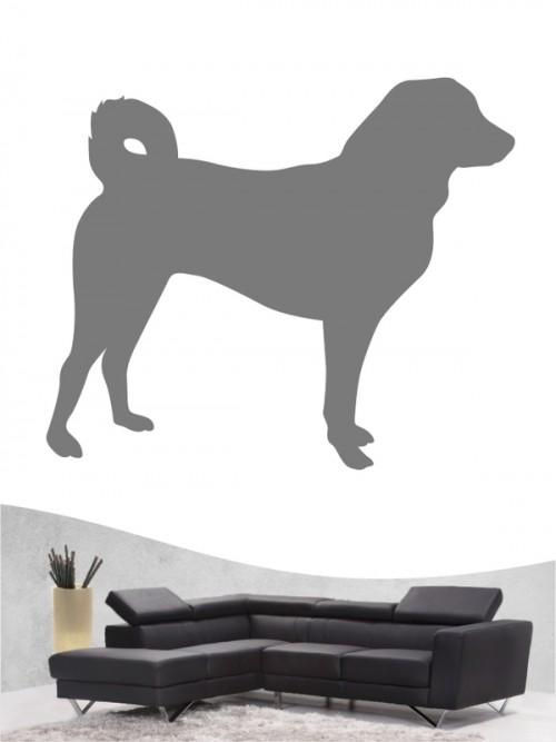Appenzeller Sennenhund 1 Wandtattoo