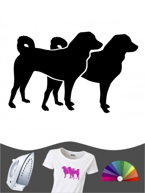 Appenzeller Sennenhund 2 - Bügelbild