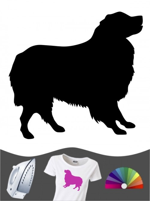 Australian Shepherd 1b Bügelbild