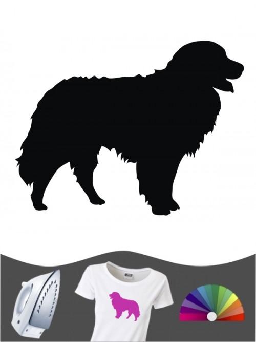Berner Sennenhund 1 Bügelbild