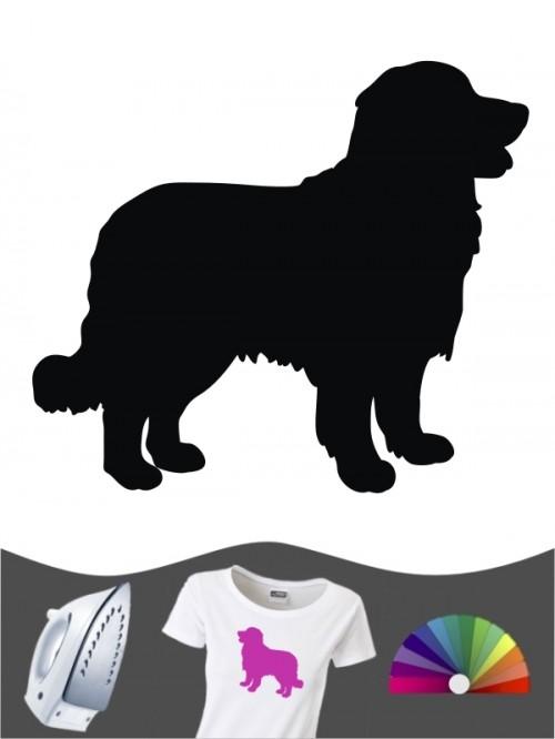Berner Sennenhund 1a Bügelbild