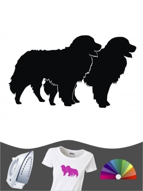 Berner Sennenhund 2 - Bügelbild